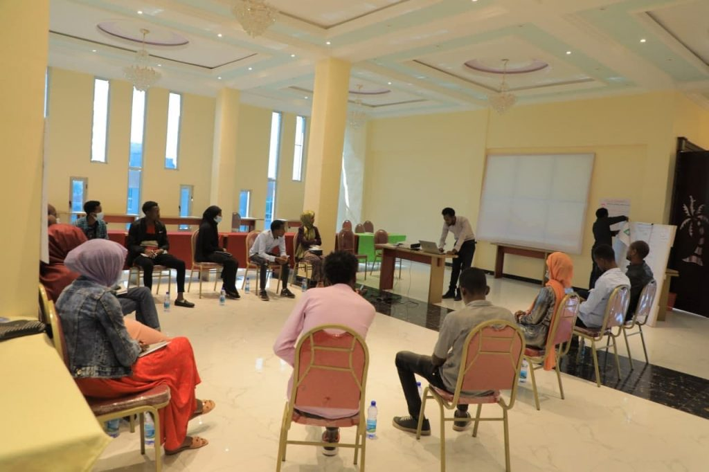 Training on Youth Volunteerism in Peace Building for Youth Peace Agents in Shashamanne
